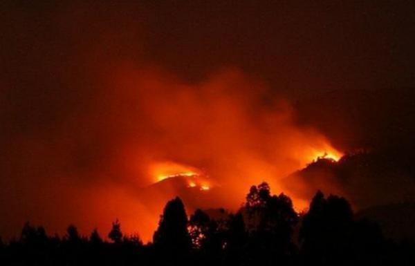 Api Rokok Pendaki Jadi Penyebab Gunung Rinjani Terbakar