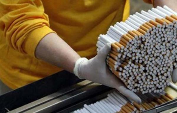 Pemerintah Masih Punya Peluang Tingkatkan Penerimaan Cukai Rokok